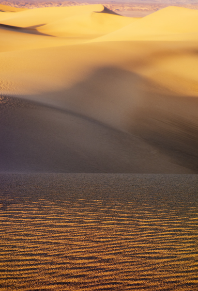 Mesquite Flat Sand Dunes. Shot on a Sony RX100 using a limited depth of field. Post processing in Nik Viveza.