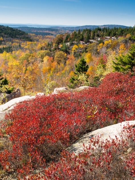 Fall colours in Acadia National Park. Captured on an Olympus OMD EM5 camera with Panasonic 14-45 lens.