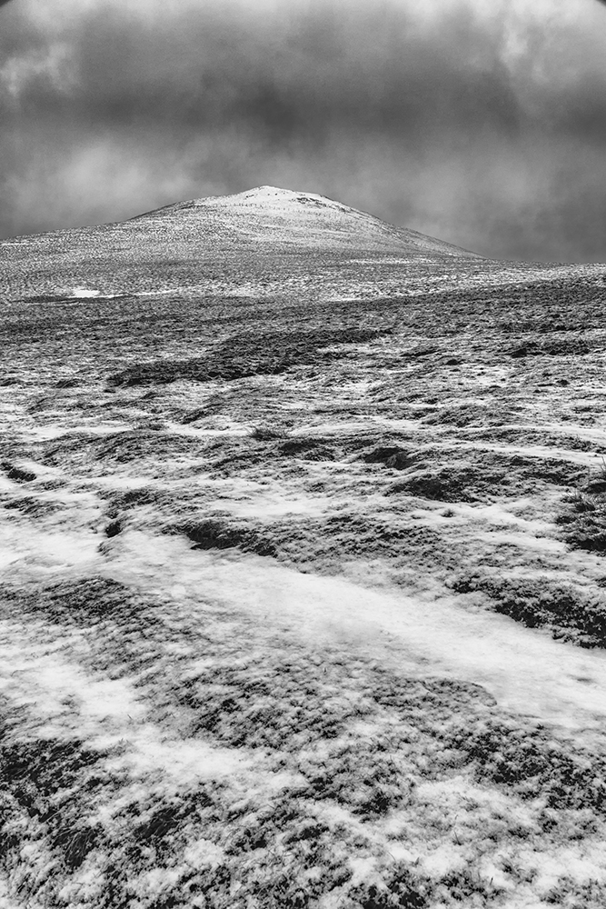 And for fans of B&W, here is the first image processed in Nik Silver Efex.