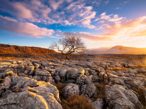 Wonderful morning light. Captured using an Olympus EM5 and Olympus 9-18mm lens (my favourite lens for landscape work).