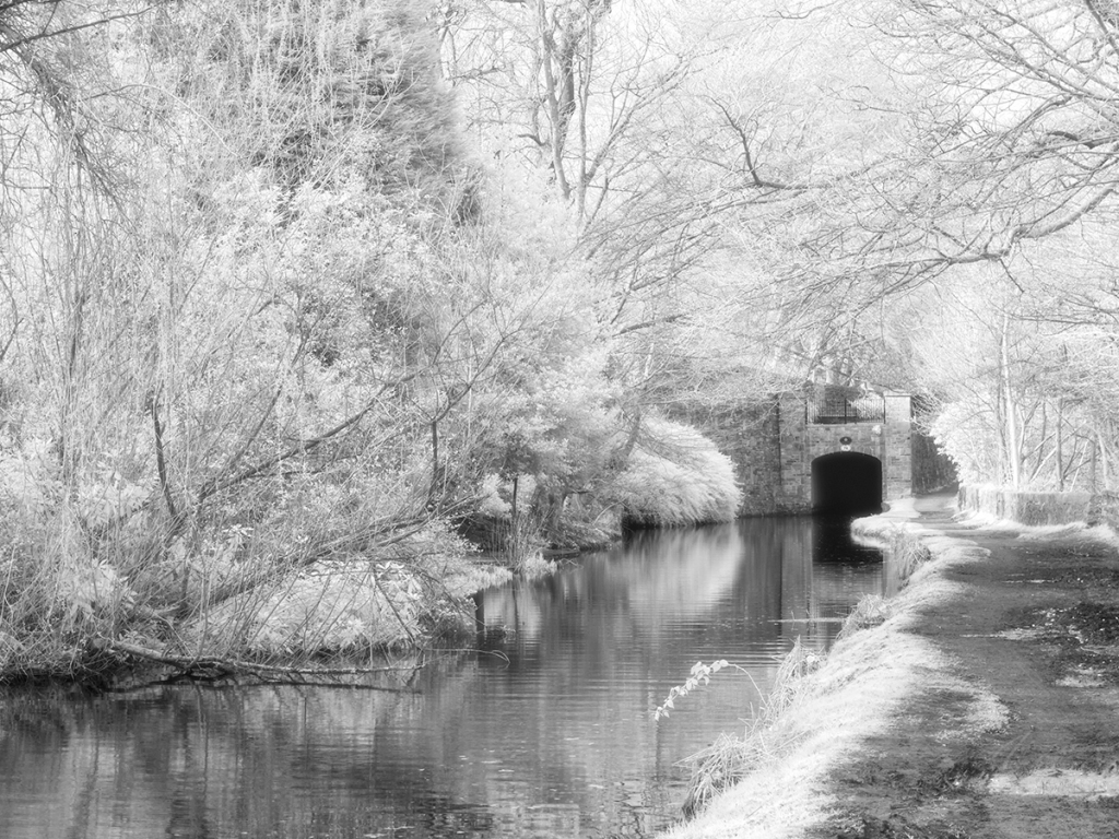 Canal near to my house. Shot on an IR converted GX1 but with an IR850nm filter on the lens. Halation effect added in Photoshop.