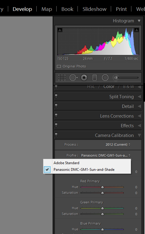 Lightroom Camera Profile found under the Calibration section of the Develop Module