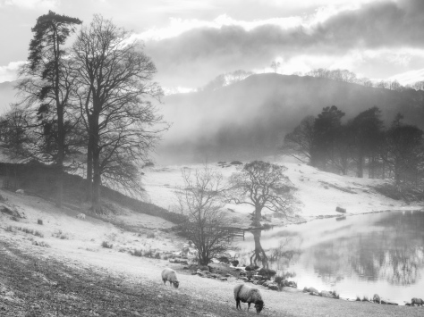 Olympus EM5 and a misty day in the Lakes