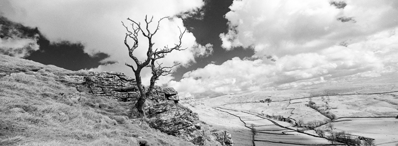 Rollei IR400 film rated at ISO 6 and developed in Rodinal 1:100. Hasselblad XPan + 30mm lens.