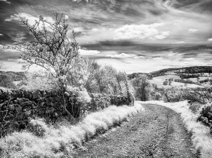 """Olympus EM5 converted to Infrared. f7.1, 1/400"""", ISO200, lens at 14mm"""