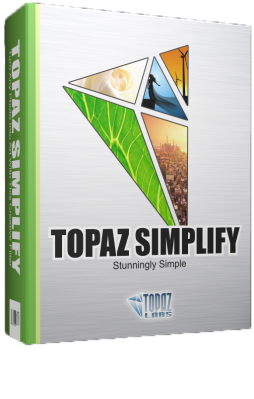 Topaz Simplify