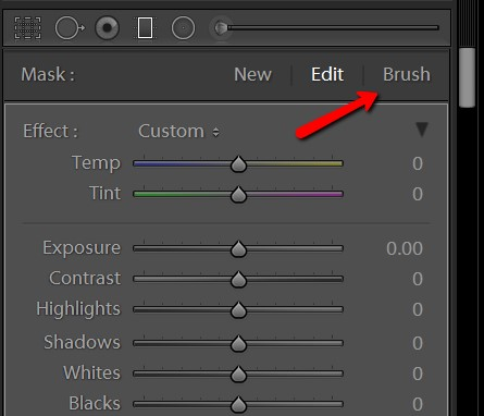 Location of the new Brush Tool