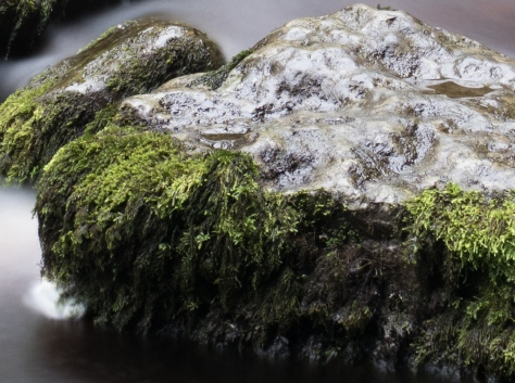 Canon G7X Sample 1 at 100%