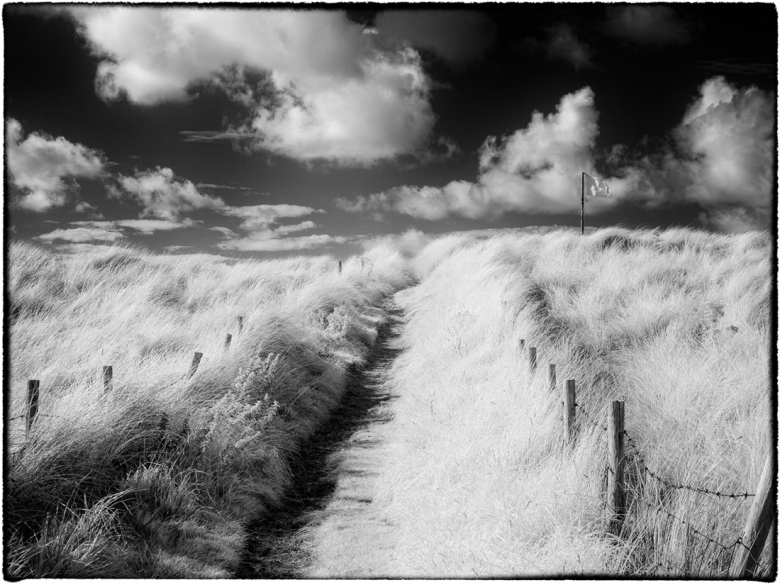 Path to the Beach, North Wales. Olympus EM5 converted to shoot Infrared using 665nm filter. Post processing in Nik Silver Efex Pro.