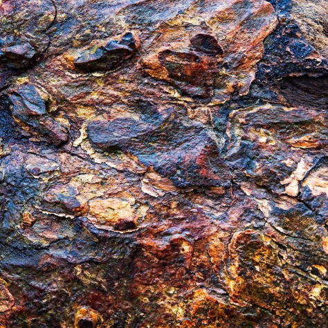 Wet tree bark. Captured witht he Olympus EM5 + Olympus 12-40 lens. Post processing with OnOne Effects.