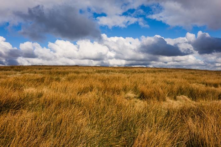 Moorland near to Blackstone Edge.
