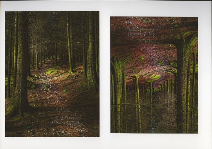 Side by side print comparison. Lightroom is on the right.