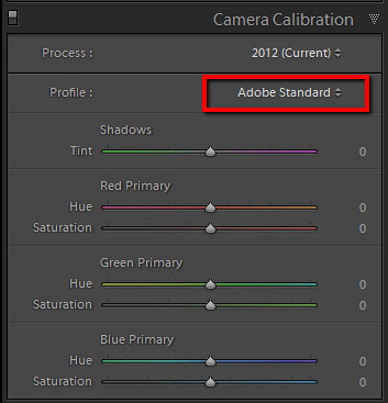 Camera Calibration tab in Lightroom with the Adobe Standard profile selected.