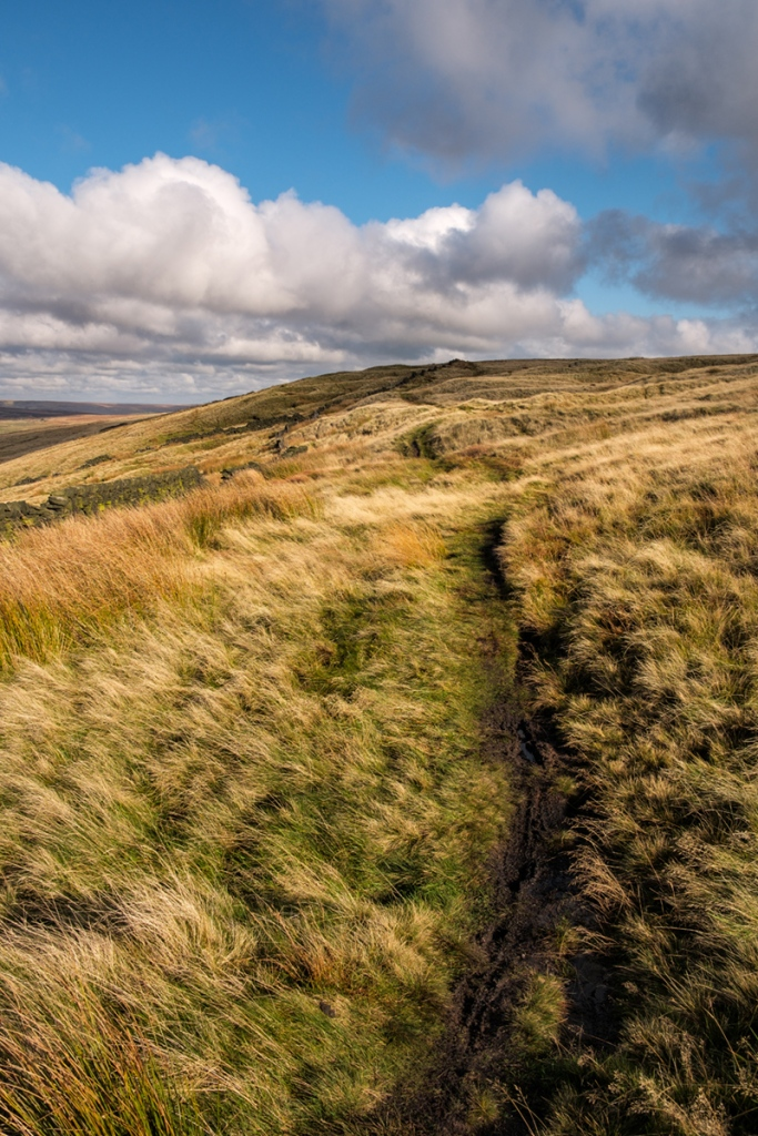 Fuji XT2 - The Moors above Saddleworth.