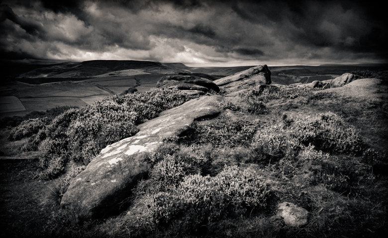Rock and heather in the Peak District. Fuji XT1. Conversion in Lightroom.