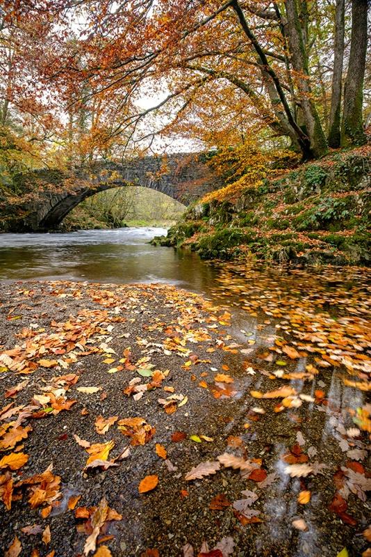"""Clappersgate Bridge, The Lake District, UK. Fuji XT2, 10-24 lens. ISO100, 0.6"""" at f/9.0. Polarizing filter."""