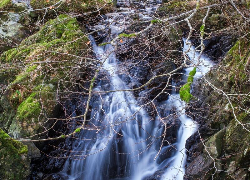 Fuji RAW File Processing Improvements | The Lightweight Photographer