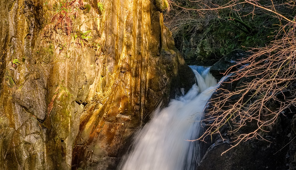 Hollybush Spout, Ingleton Waterfalls Trail