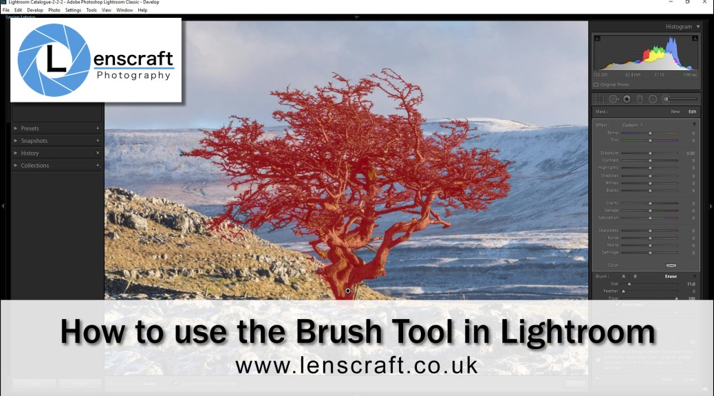 How to use the Adjustment Brush in Lightroom video thumbnail