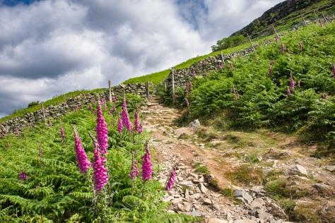 Walla Crag, The Lake District, Cumbria.