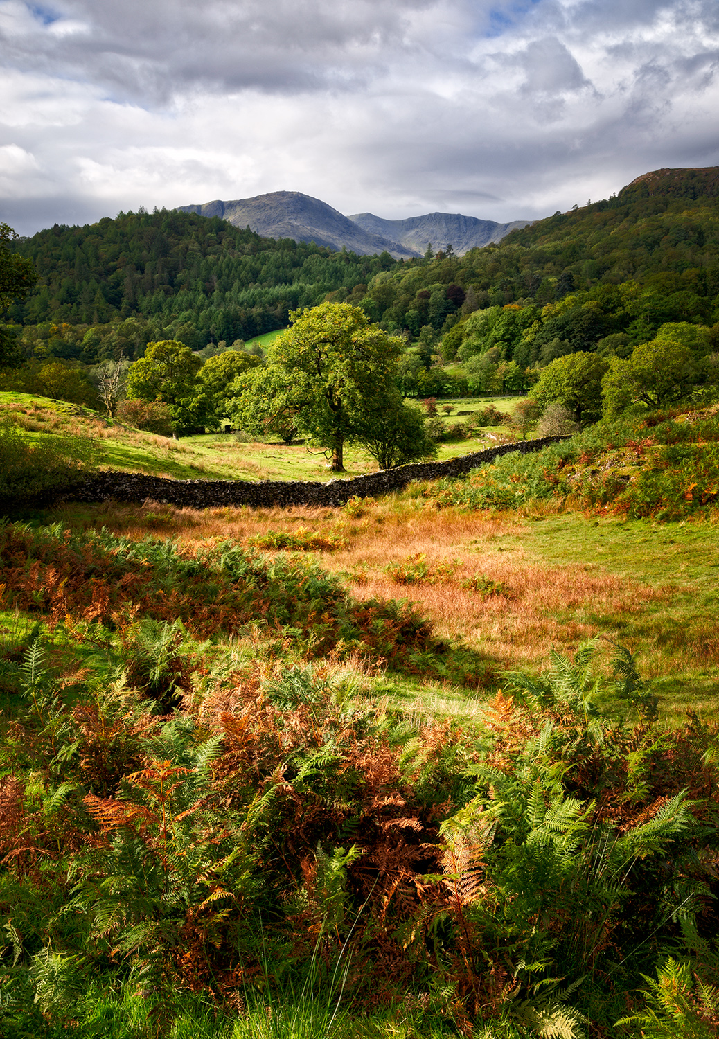 Langdale Valley, The Lake District