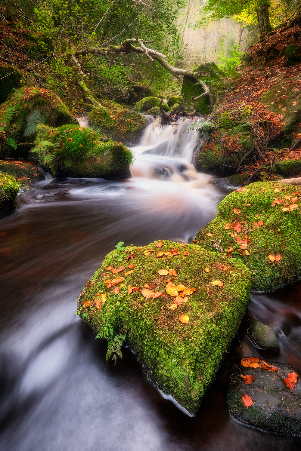 Wyming Brook, Peak District.