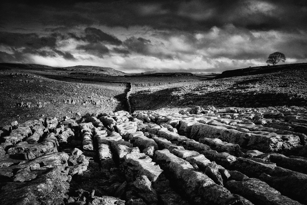 Limestone pavement in the Yorkshite Dales near Malham.