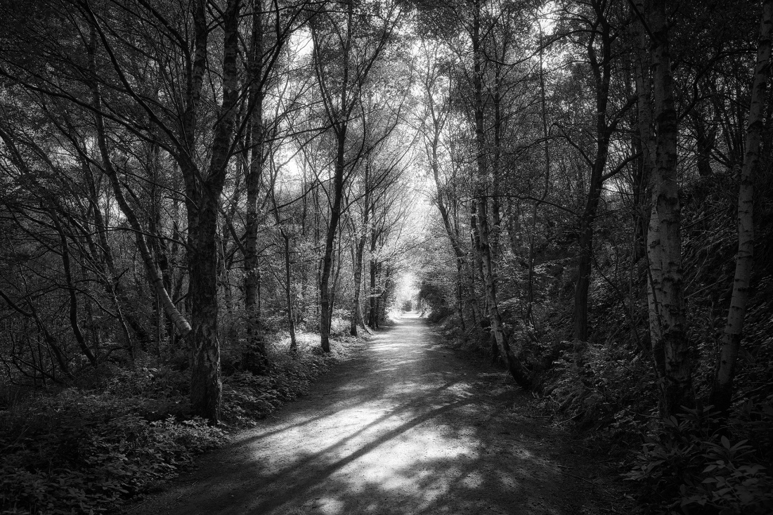 Saddleworh Footpath. Fuji XE3 with 16mm lens.