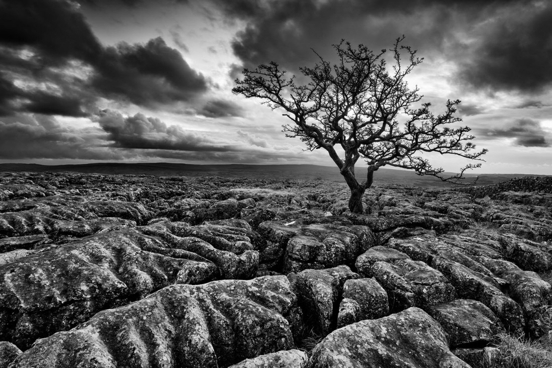 Livemstone Pavement above Ingleton in the Yorkshire Dales
