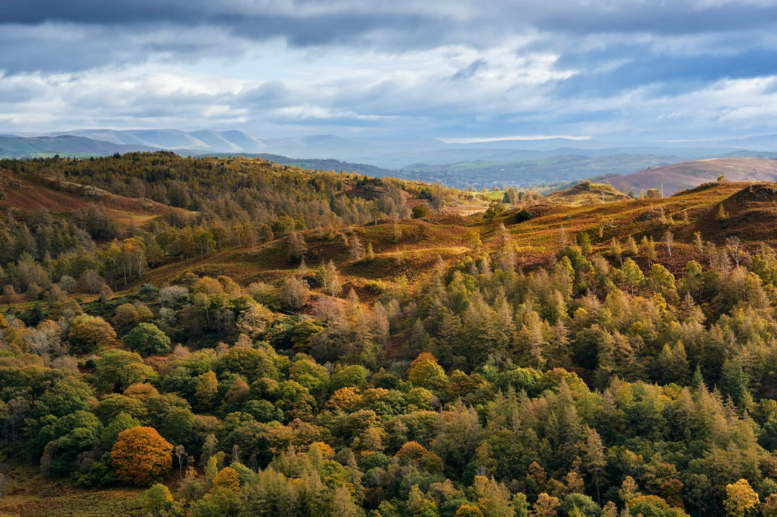 Holme Fell, Lake District