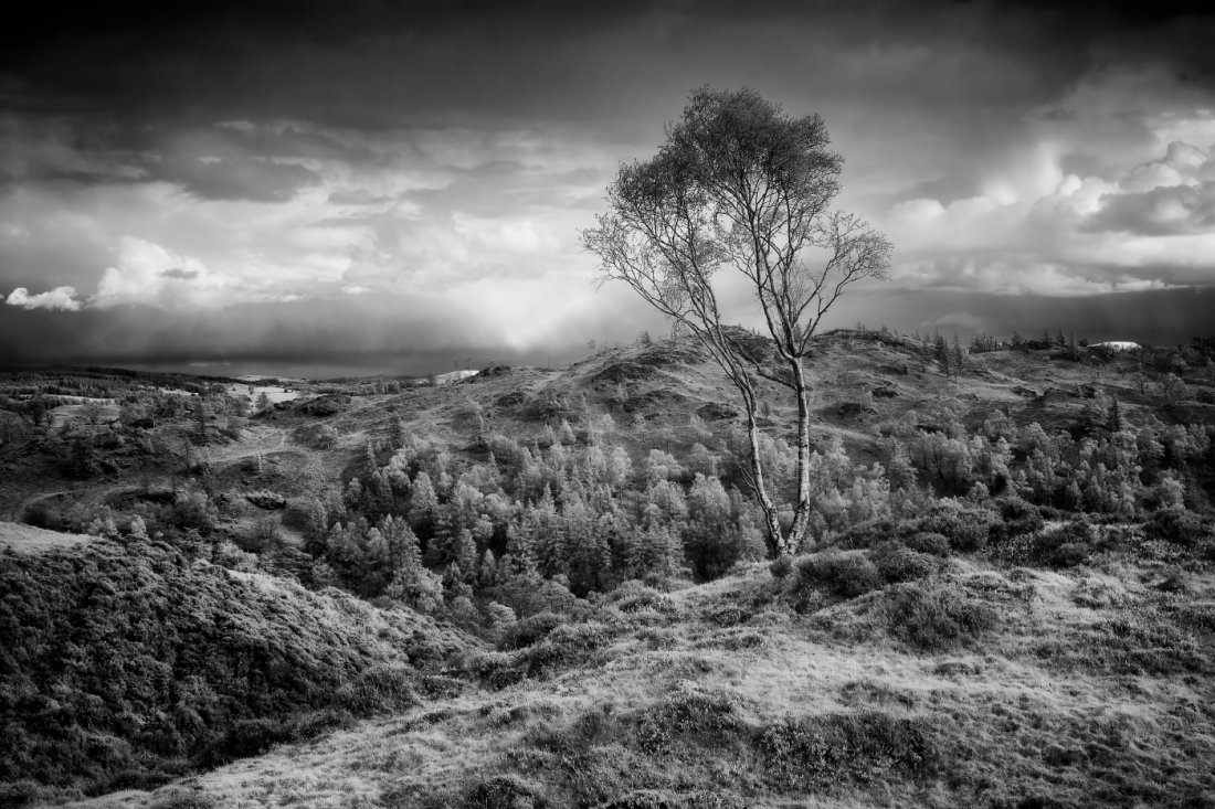 Holme Fell, Lake District. Fuji XT2 converted to Infrared